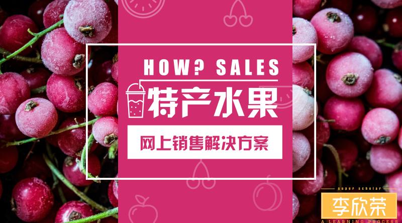 李欣荣:新疆水果特产网络销售渠道市场营销方案
